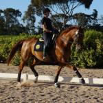 Tracey Baker riding Danson Dynamic