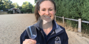 Dressage Fun with Wine