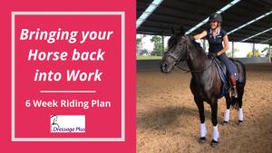 Riding plan